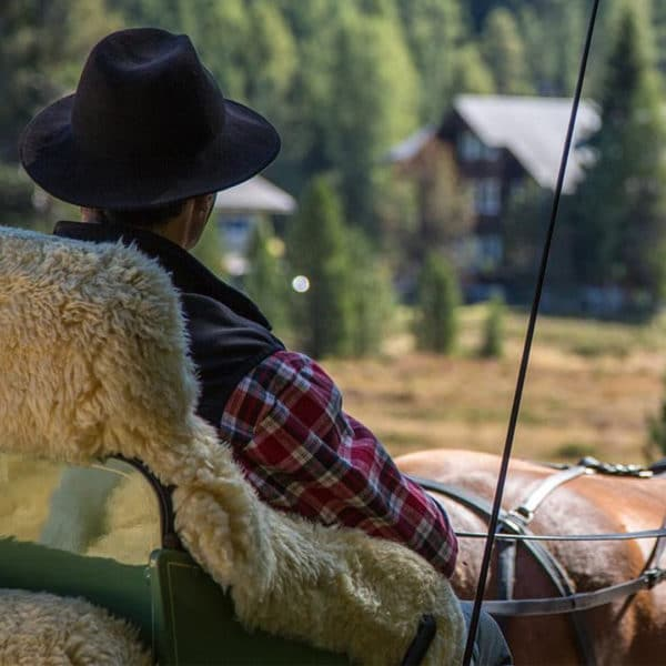 Прогулка на конной повозке